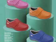 zapato miln scl liso colores dian.png