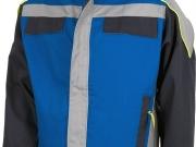Cazadora tricolor azulina.jpg