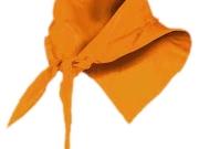 Pañuelo naranja.jpg