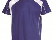 Camiseta bicolor 377.jpg